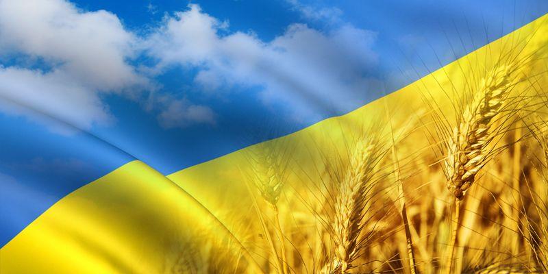 Розробка та просування сайтів Україна
